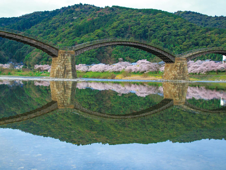4/5 岩国の名勝、錦帯橋と桜の風景美を訪ねて