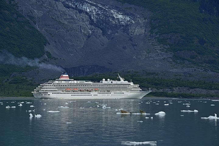 驚異の氷河に心抱かれ<br>野生動物の躍動する海へ ALASKA