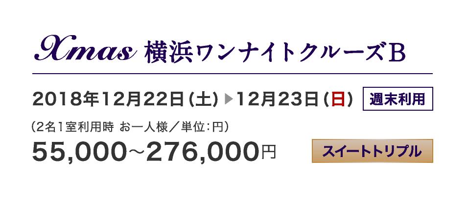 Xmas 横浜ワンナイトクルーズB 12/22-12/23