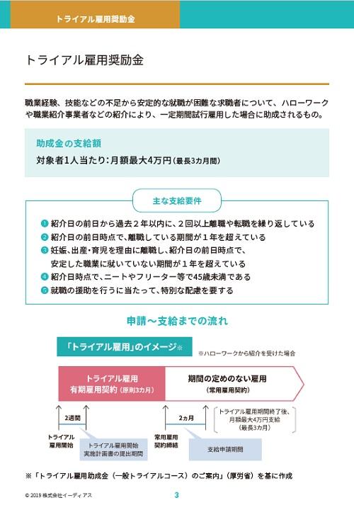 @人事ホワイトペーパー【2019年度版】助成金活用マニュアル(雇用編)のインサート画像