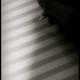 東海林 克のアイコン画像