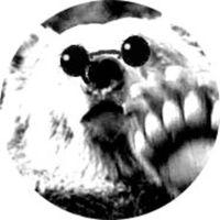 Morinobearのアイコン