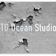 TG Ocean Studioのアイコン画像
