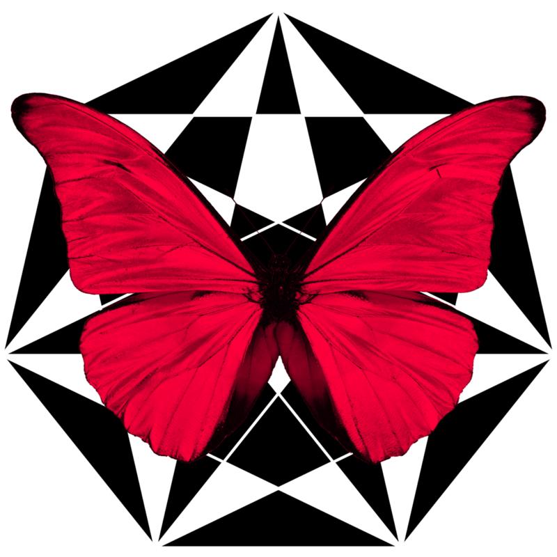 アイコン: The Dream of a Butterfly