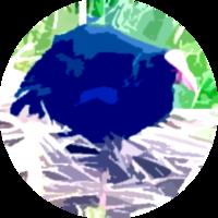マルハナプケコのアイコン