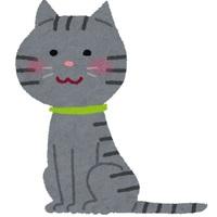 子猫たいさのアイコン画像