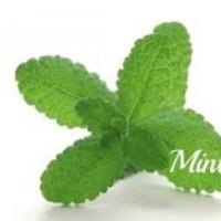 Mintのアイコン画像
