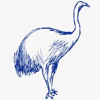巨鳥モアのアイコン