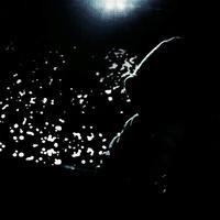 モリノヒトのアイコン画像