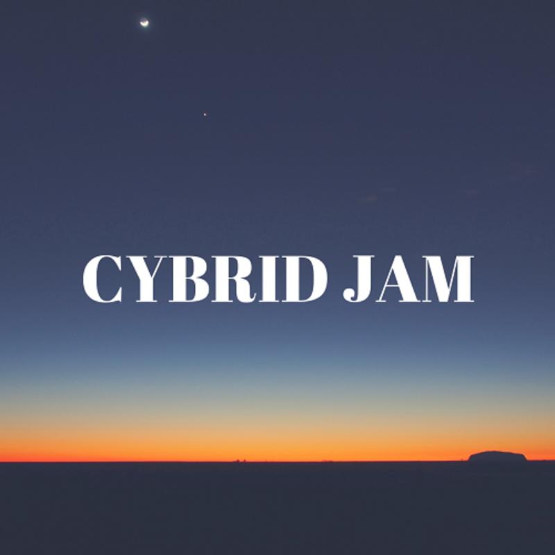 アイコン: CYBRIDJAM