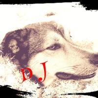 Doggie Jazzのアイコン