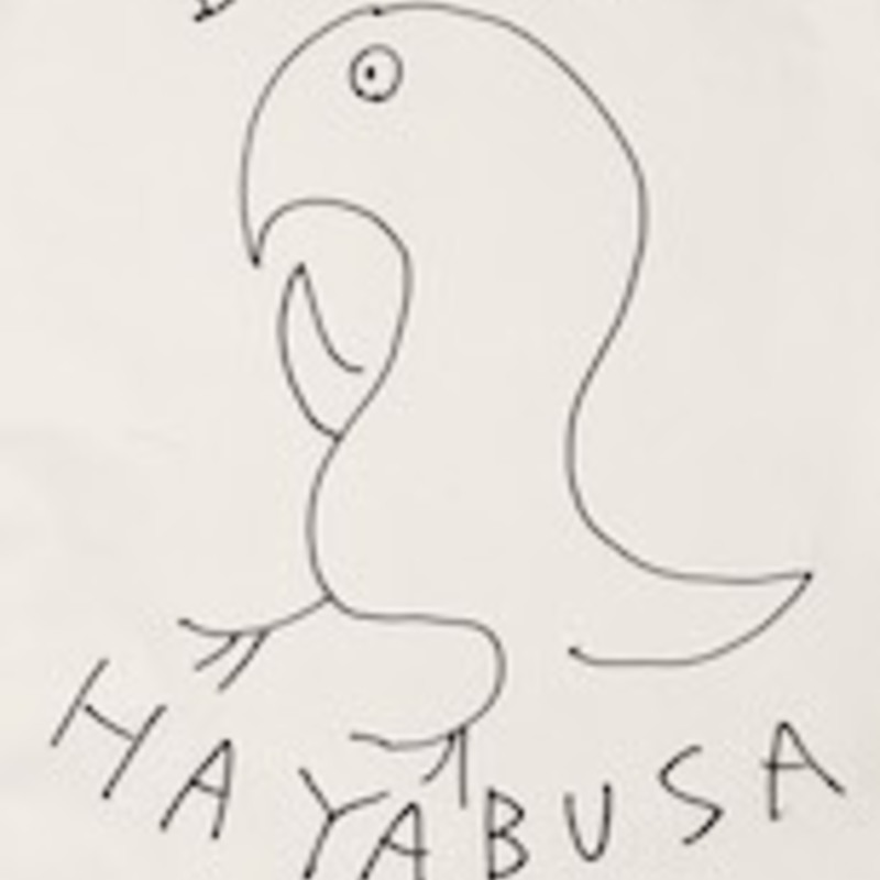 アイコン: HAYABUSA / INKO