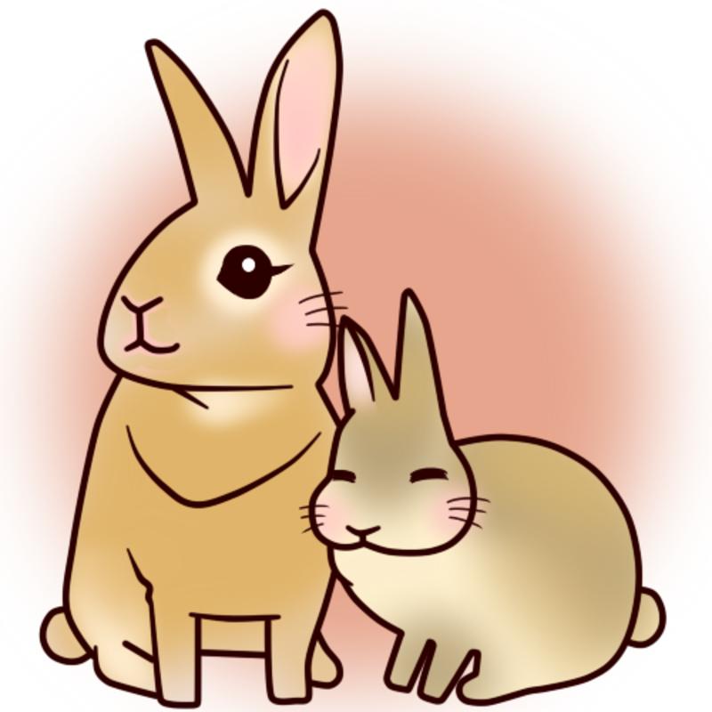 アイコン: スタジオMusic Rabbit