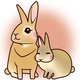 スタジオ Music Rabbitのアイコン画像