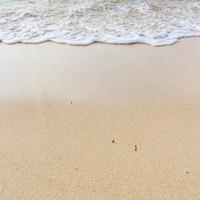 砂浜のイメージ