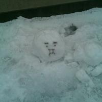 西澤 冬親のアイコン画像