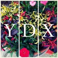 YDXのアイコン画像