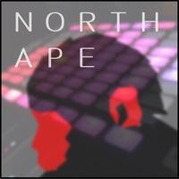 NORTH APEのアイコン画像