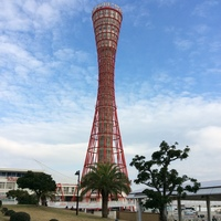 Kei M.のアイコン画像