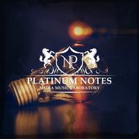 Platinum Notesのアイコン画像