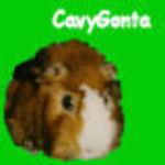 cavygontaのアイコン画像