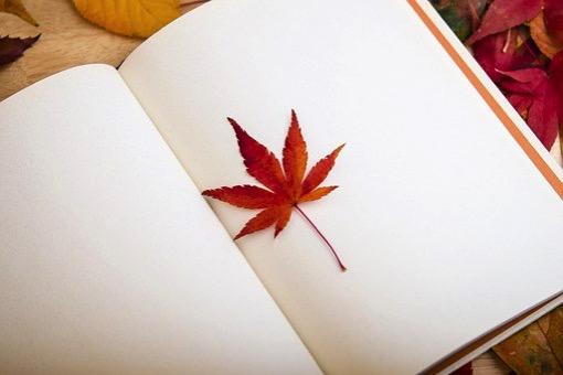 Maple leaf 638022 340
