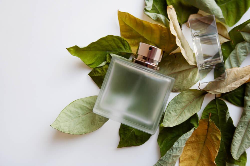 植物の葉と香水