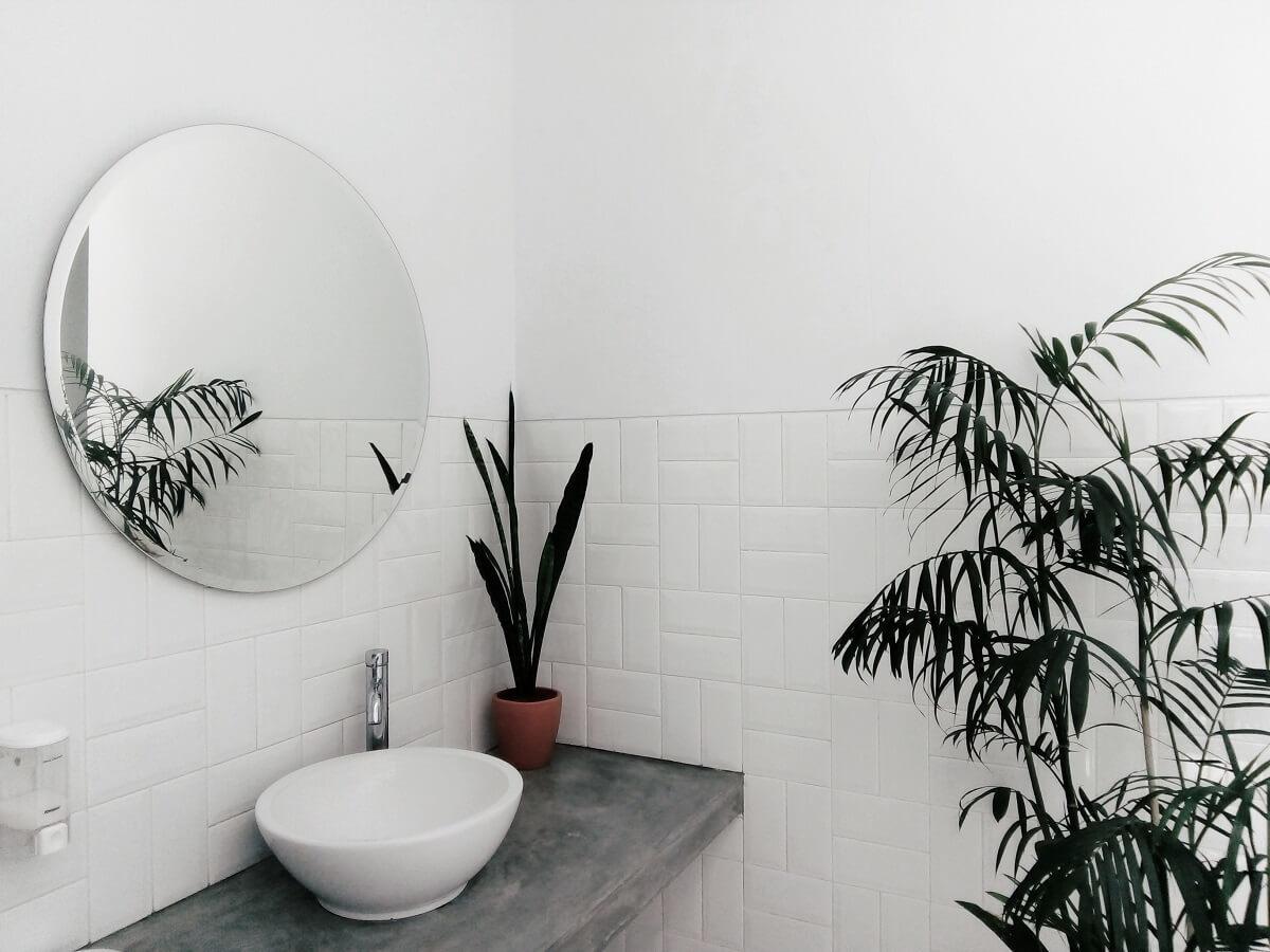 観葉植物のある洗面台
