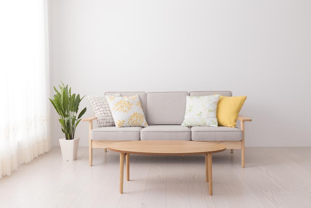 観葉植物とソファのある部屋