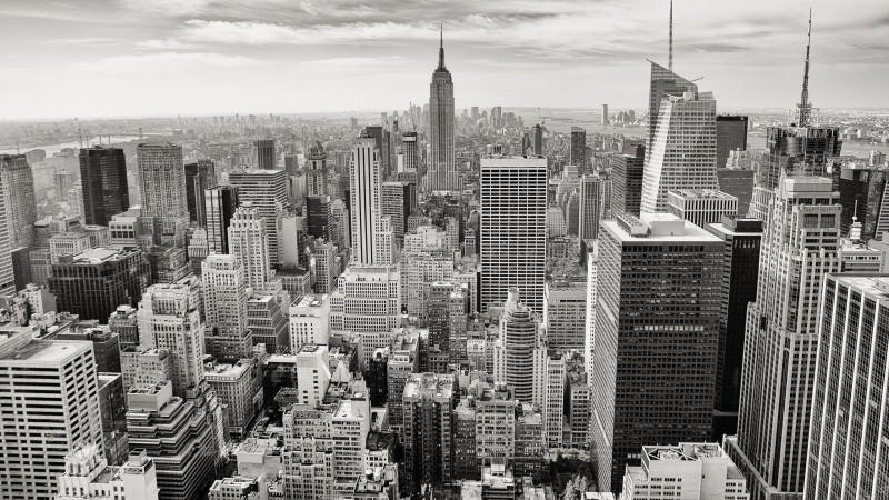 コンサルティング業界研究|「現状」「今後の動向・将来性」を知るのサムネイル画像