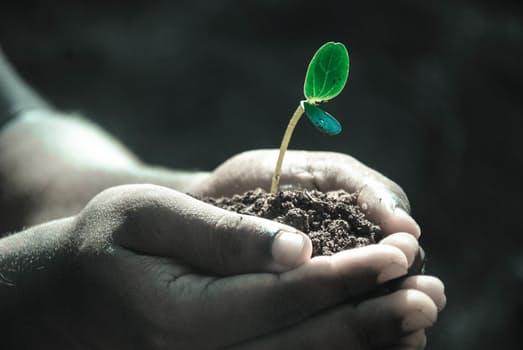 兼業農家の収入と補助金制度|兼業農家の確定申告はどうする?のサムネイル画像