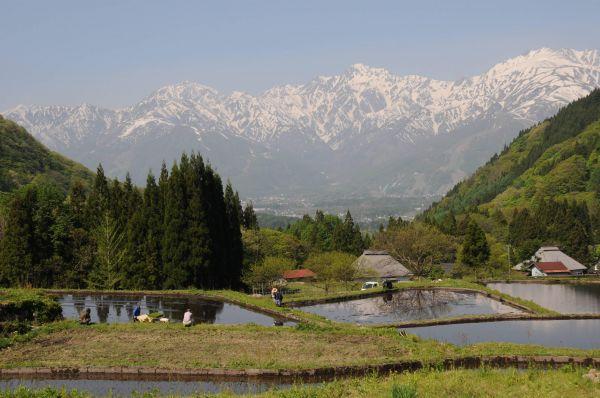長野県への移住の方法|移住の際の仕事探しや助成金はどうなる?のサムネイル画像