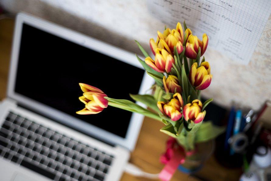 花屋へ転職する方法|未経験から花屋へ転職は可能?|転職タイミングのサムネイル画像