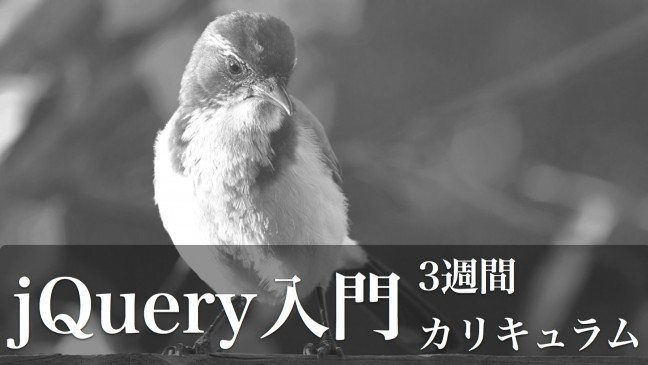 jquery-カリキュラム