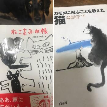 📚『ねこまみれ帳』『カモメに飛ぶことを教えた猫』