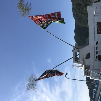 JFマリンバンク浜の応援隊で高知の土佐さがのもどりガツオ祭りへ!
