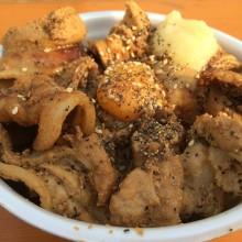 大阪・肉汁祭とUSJとグレーな猫