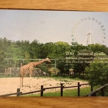 写真展 ZOO-house of giraffe-