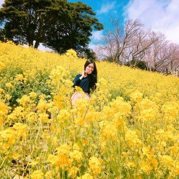 黄色のサイリウム⇦
