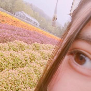 ラベンダー 〜9月13日〜