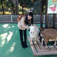 Animal Day♪