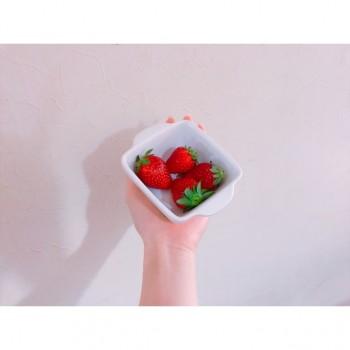 ❀ 朝の ❀ flower