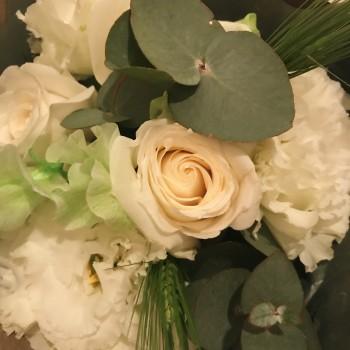 ❀ 39 ❀ flower