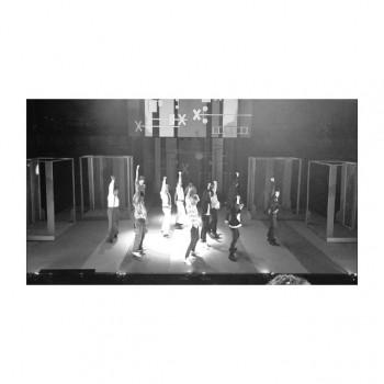 ❀ 俳優チーム楽日です ❀ flower