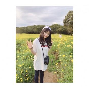 ❀ 秋桜 ❀ Flower