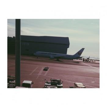 ❀ 日本航空さんの機内オーディオでもお逢いしま笑! ❀ Flower