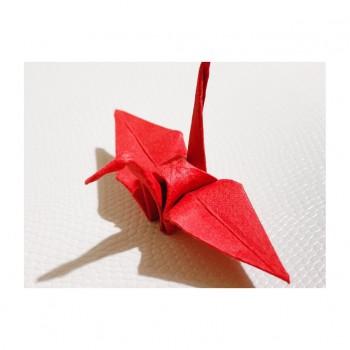 ❀ 第7回Japan Vietnam Festival延期のお知らせ ❀ Flower