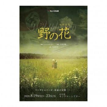 𖤐 ミュージカル座さん8月公演『野の花』に出演決定