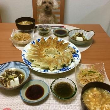 昨日のお夕食〜(*≧∀≦*)