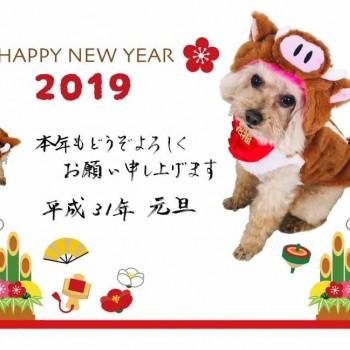 新年のご挨拶(^^)
